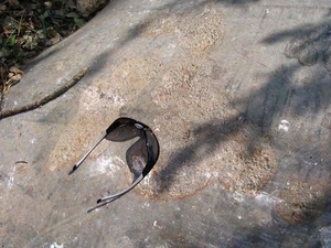 300x225 8/25/08 #12 - Another area of external corrosion on the shorter section near the possible failure., in Pilot Grove, MO PEPL explosion, by John S. Quarterman, for SpectraBusters.org, 25 August 2008