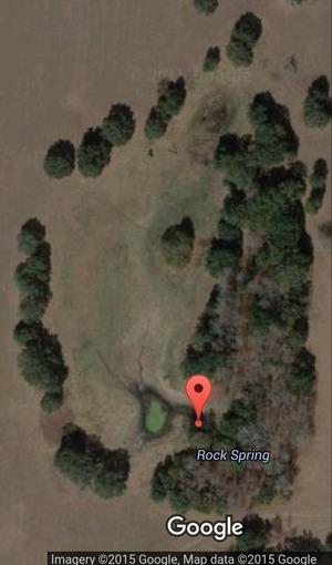 Rock Spring Map 29.1191060, -82.3829010